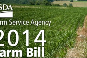 Farm Bill Provides $262M for Dam Rehabilitation – Feedstuffs