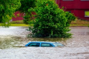 Green Infrastructure and Climate Change Disaster Preparedness | The Energy Collective